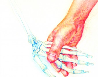 Holding Lucy's Hand Coloured Pencil My focus is portraiture and figurative work. To improve my drawing skills and better understand the underlaying structure of the human form I have made a number of anatomical studies using male and female skeletons. This drawing is also a self portrait as the hand is mine holding Lucy's. Lucy was named after the bones of first homo sapiens skeleton was found in Kenya.