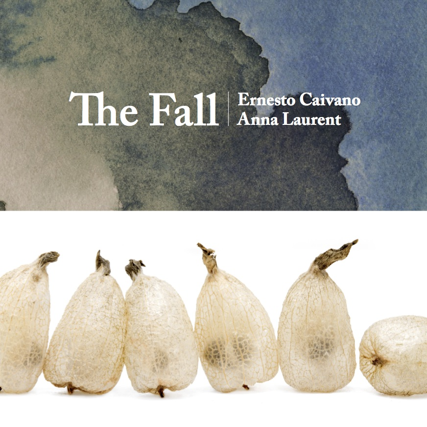 TheFall_coverimage
